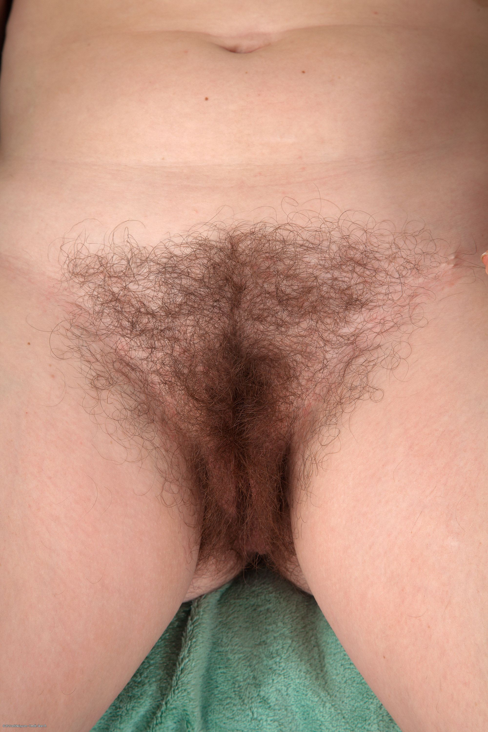 Pretty hairy pussy close up